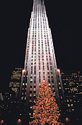 Carl Purcell - Xmas Tree at Rock Center