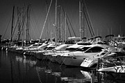 Yachts Prints - yachts and powerboats in the port marina Cambrils Catalonia Spain Print by Joe Fox