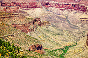 Thor Mixed Media Framed Prints - Yaki Point View of the Grand Canyon Framed Print by Bob Johnston
