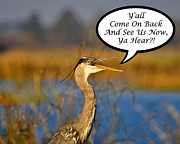 Gray Heron Posters - Yall Come On Back Heron Card Poster by Al Powell Photography USA