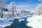 James Steinberg - Yampa River Colorado