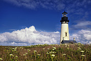 Lighthouse Art - Yaquina Head Lighthouse by Andrew Soundarajan