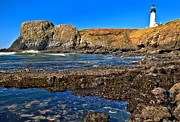 Adam Jewell - Yaquina Head On The Rocks