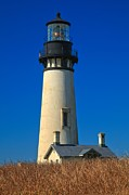 Yaquina Head Light Prints - Yaquina Head Portrait Print by Adam Jewell