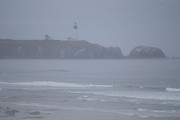 Seimagesonline Prints - Yaquina Lighthouse in the Fog Print by Sharon Elliott