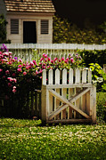 Painted Garden Gate Framed Prints - Yard Framed Print by Margie Hurwich