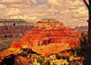 Nadine and Bob Johnston - Yavapai Grand Canyon
