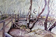 Victoria Paintings - Yea Wetlands Victoria Australia by Audrey Russill