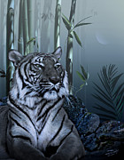 Asian Tiger Framed Prints - Year of the Tiger Framed Print by Schwartz