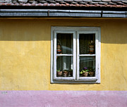 Abandoned Houses Photos - Yellow and Pink Facade. Belgrade. Serbia by Juan Carlos Ferro Duque