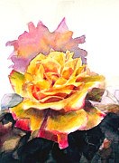 Rose Garden Paintings - Yellow and pink roses by Greta Corens