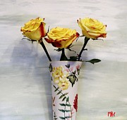 Grey Background Prints - Yellow and Red Tipped Roses Print by Marsha Heiken