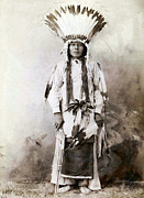 Indian Headdress Posters - Yellow Badger 1880 Poster by Studio Photo