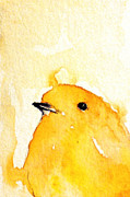 Canary Paintings - Yellow bird by Maria Kitano