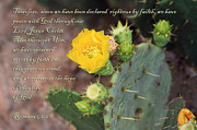 Spritual Prints - Yellow Blossom on Cactus Romans  Print by Linda Phelps
