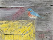 Jymme Golden - Yellow Box Bluebird