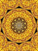 Yellow Burst  Print by Annette Allman