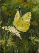 Black Eyed Susan Print Paintings - Yellow Butterfly by Jennifer Calhoun