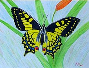 Peggy Miller Posters - Yellow Butterfly Poster by Peggy Miller