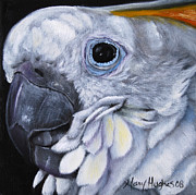 Yellow Beak Paintings - Yellow Crested Cockatoo by Mary Hughes