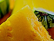 Watermelons Photos - Yellow Crimson by Craig Carter