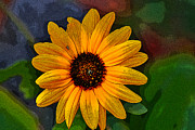 Grow Digital Art - Yellow Daisy and the Bug by Janice Rae Pariza