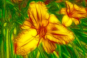 Stamen Mixed Media Framed Prints - Yellow Day Lilies Framed Print by Omaste Witkowski