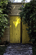 Cobblestones Posters - Yellow Double Doors Poster by Lynn Palmer