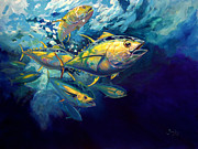 Yellowfin Painting Framed Prints - Yellow fins Framed Print by Mike Savlen