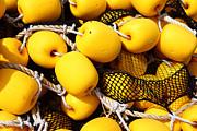 James Brunker - Yellow Fishing Net Floats