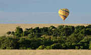 East Africa Framed Prints - Yellow Hot Air Balloon Masai Mara Framed Print by Tom Wurl