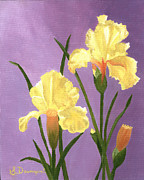 Birthday Present Paintings - Yellow Iris by Sara Davenport