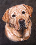 Amy Reges - Yellow Labrador Portrait...