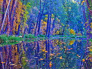 Oak Creek Photo Originals - Yellow Leaves by Brian Lambert