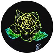 Jim Harris - Yellow Line Rose