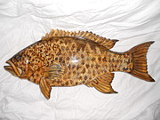 Lisa Ruggiero - Yellow Mouth Grouper...