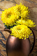 Yellow Flowers Posters - Yellow mums in copper vase Poster by Garry Gay