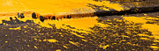Paint Splash Photos - Yellow Ochre Paint Spill 01 by Rick Piper Photography