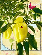 Pepper Greeting Card Prints - Yellow Pepper Print by Liane Wright
