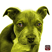 James Ahn - Yellow Pitbull puppy pop...
