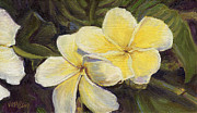 Stacy Vosberg - Yellow Plumeria Flowers