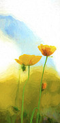 Sheila Smart - Yellow poppies with...