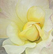 Laraine Wade-Butter - Yellow Rose