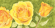 Catherine Basten - Yellow Roses