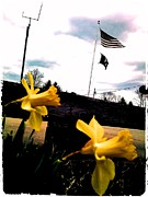 Thommy Mccorkle Digital Art Metal Prints - Yellow Salute Metal Print by Thommy McCorkle
