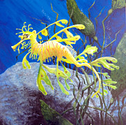 Seadragon Posters - Yellow Seadragon Poster by Mary Palmer