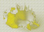 Yellow Shell Print by Carol Lynch