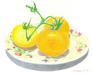 Tomato Drawings Framed Prints - Yellow Tomatoes Framed Print by Loraine LeBlanc