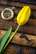 Gold Key Prints - Yellow tulip on old books Print by Garry Gay