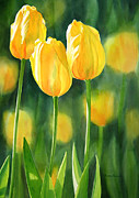 Realistic Watercolor Prints - Yellow Tulips Print by Sharon Freeman